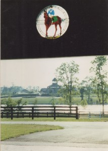 Looking toward Stallion Complex across lake from Yearling barn